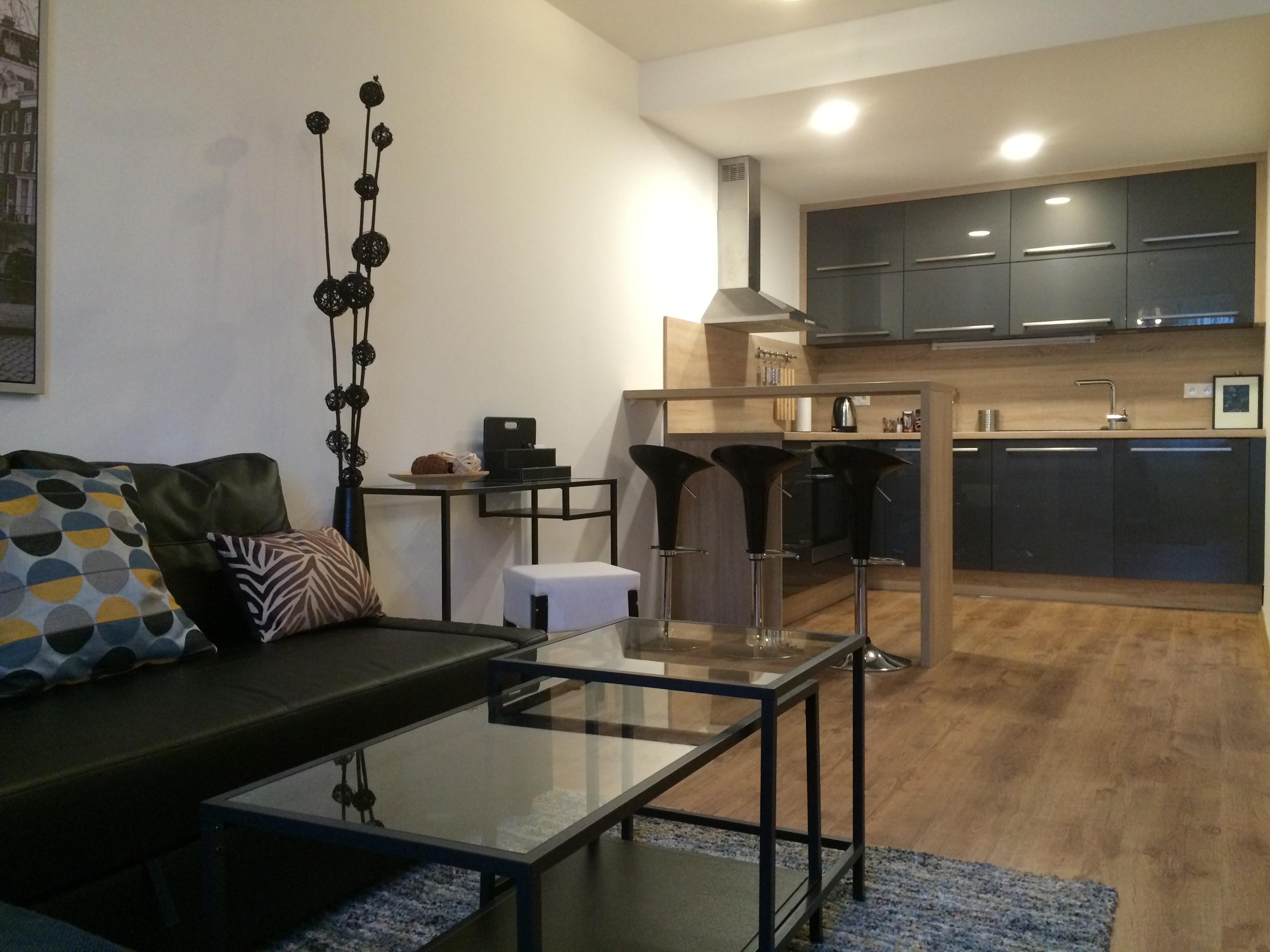 Prenajmeme 2 i byt v Novostavbe, Stare Mesto, čast suche myto ( Modra gula), navrhnute architektom